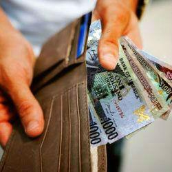 Public Loans